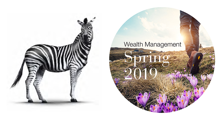Wealth Management Spring 2019