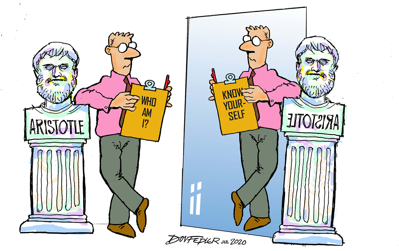Self knowledge - looking in a mirror cartoon