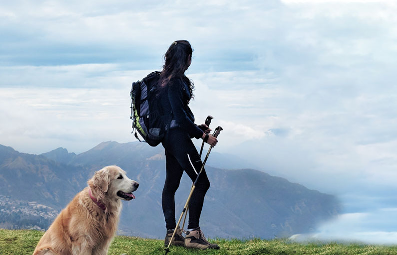 Female hiker looks out with Golden Retriever by her side