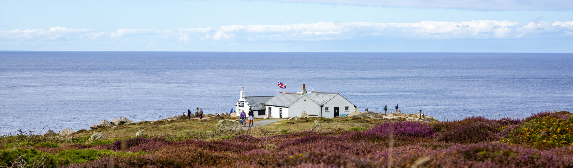 White seaside cottage surrounded by purple heather